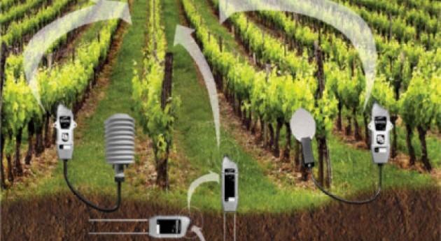 Uso sensores agricultura
