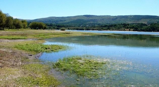 proyecto buscar atenuar proliferación algas embalse Conchas