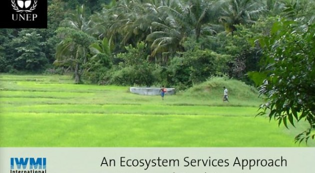 enfoque servicios ecosistemas aplicado al agua y seguridad alimentaria