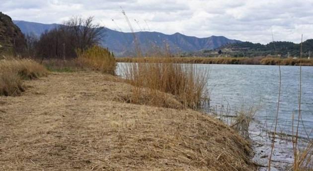 Se recuperan 200 metros margen derecho Ebro embalse Flix