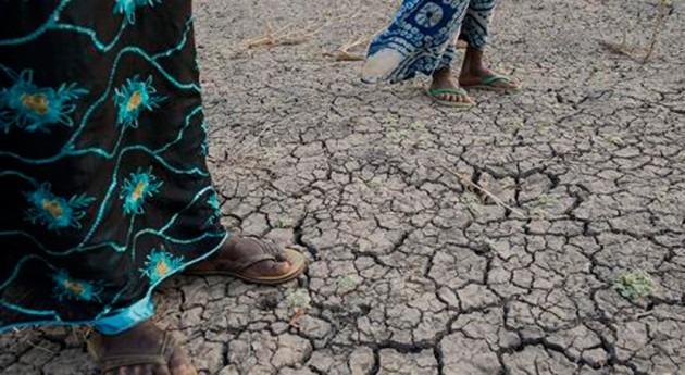 España combate desertificación también fuera fronteras