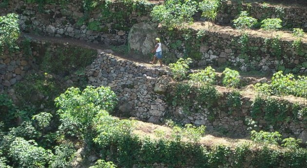Perú convoca realizar estudios caracterización y diagnóstico socioeconómico gestión agua agricultura terrazas