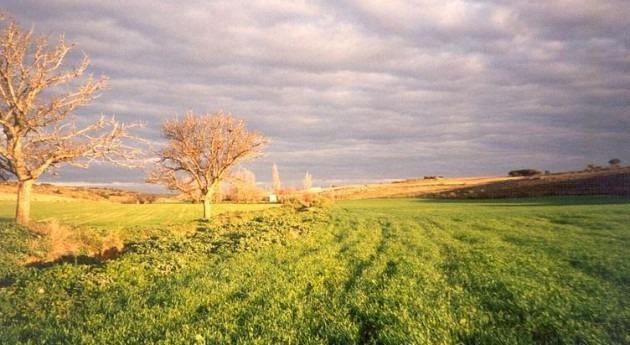 Andalucía aportará más 2,7 millones euros obras modernización regadíos 'Sol y Arena'