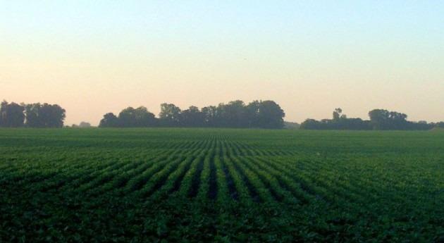 Plan Cuenca Tajo afectará manera muy negativa economía y calidad vida agricultores