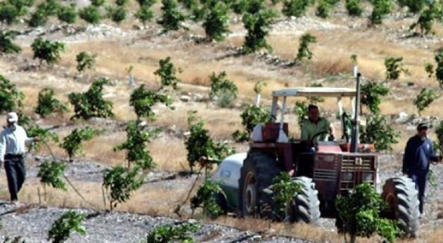 Se pueden perder fondos europeos garantizar regadíos Condado Huelva