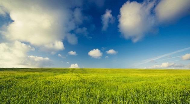 """FAO pide """"cambio paradigma"""" avanzar agricultura sostenible"""