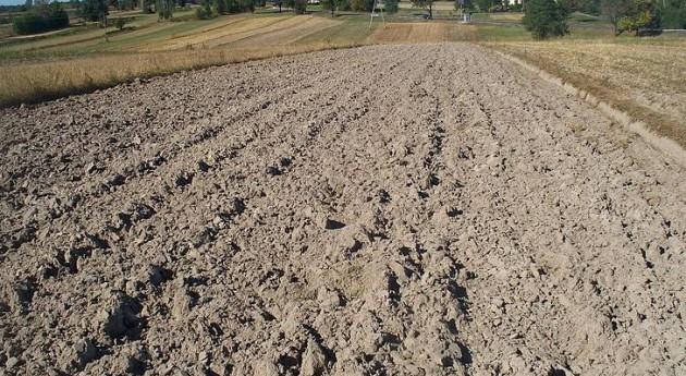 Unió Llauradors no admitirá recortes suministro agua regadío