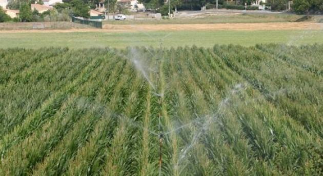 FAO ofrece tres cursos distancia desertificación, agricultura y género