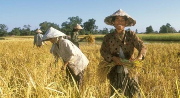 transformación agricultura frente al cambio climático, desafío global