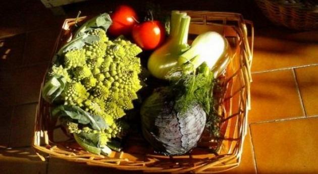 Retos, contexto y situación actual agricultura contexto cambio climático