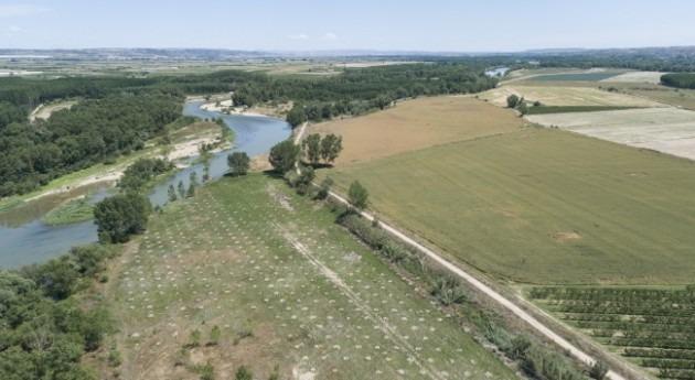 Redacción proyecto Ebro Resilience restauración fluvial Ebro Alfaro-Milagro