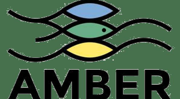Proyecto AMBER: millón obstáculos bloquean ríos europeos
