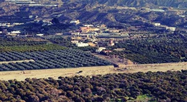 cultivos cítricos Andarax, amenazados falta agua