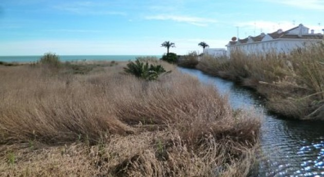 Ecologistas denuncia proyectos urbanísticos zonas inundables Benicarló