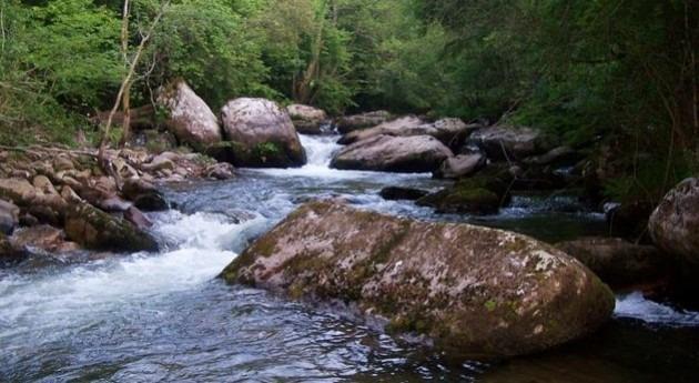 Río Besaya (Wikipedia/CC).