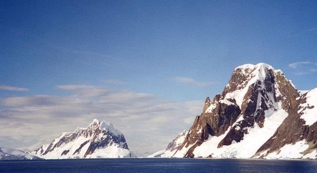 líquenes Península Antártica frenan crecimiento