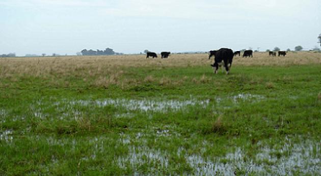 Desastre: Inundaciones soluciones integrales