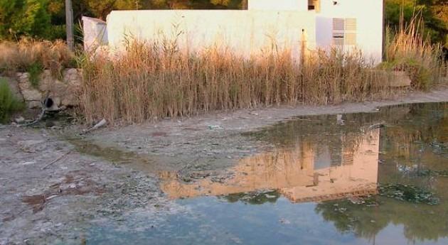 Gobierno balear pide al Estado celeridad tramitación depuradora Can Picafort