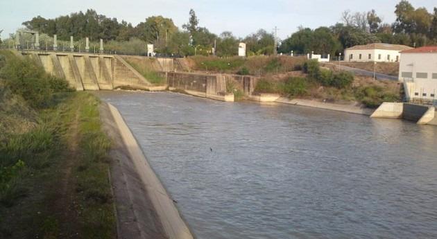 Confederación Guadalquivir licita 4,9 millones euros proyecto obras modernización zona regable Guadalquivir