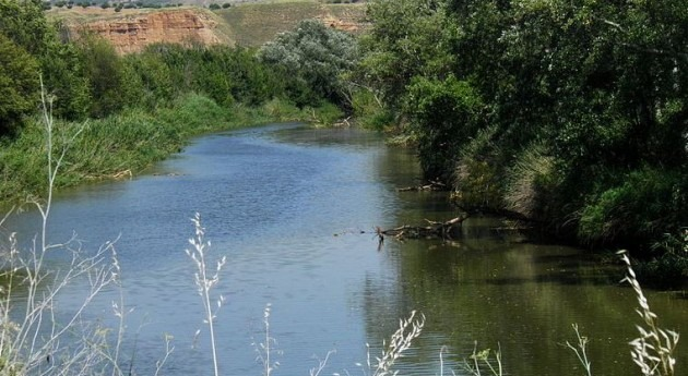 lluvias invierno aseguran campaña riegos Canal Henares