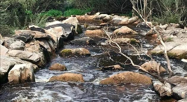 auditor proyecto LIFE CIPRÍBER visita 5 rampas peces creadas ríos Uces y Yeltes