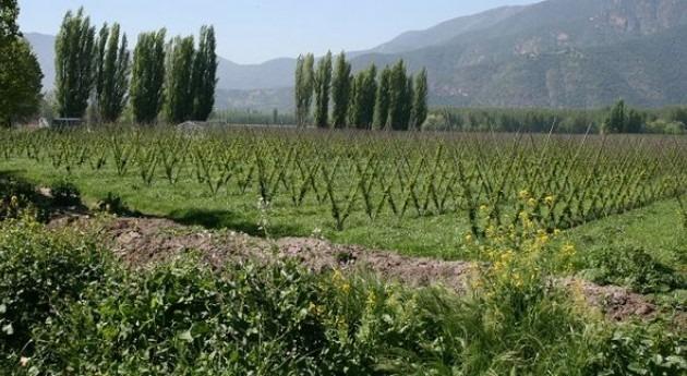 1º Foro Agricultura América Sur expondrá situación agua agricultura