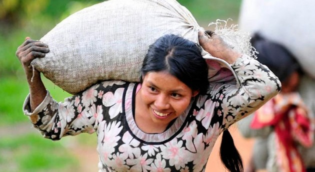 Pequeños productores aprenden adaptarse al cambio climático capital lechera Colombia