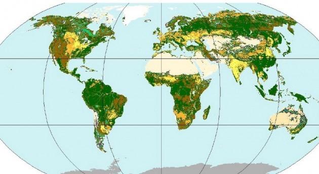 cuerpos agua ocupan 11% superficie mundial, nuevo estudio FAO