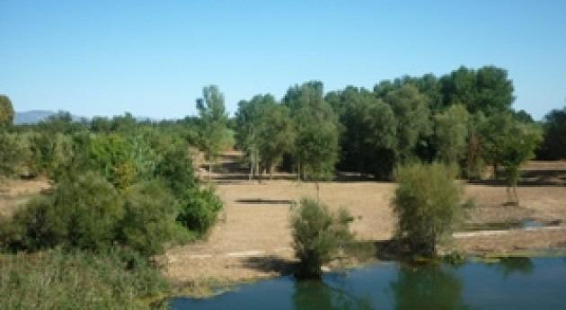 Aprobado programa conservación cauces 2016 Cataluña