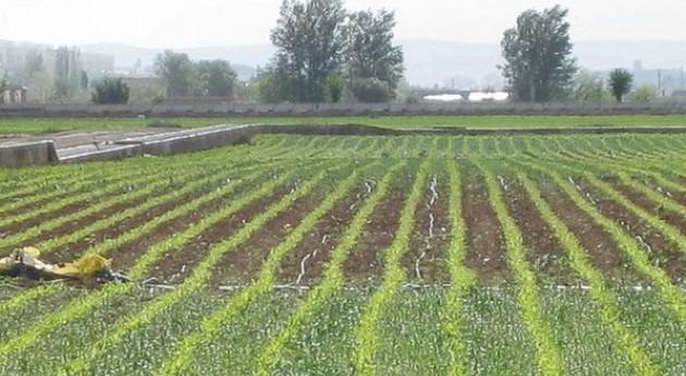 APAG Extremadura Asaja reclama ayudas comprometidas exceso lluvia invieno