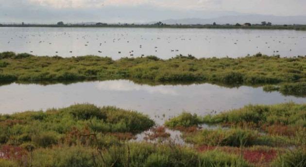 aprobación planes hidrológicos