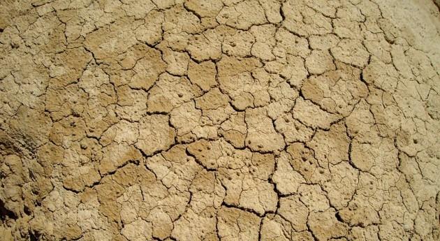 España contribuye frenar fenómeno desertificación través programa acción