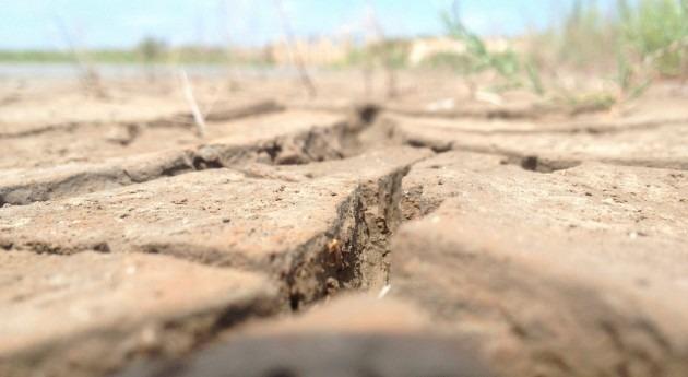 ceremonias rogativas permiten conocer sequías últimos 650 años