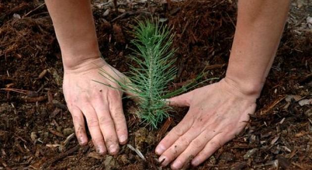 Educación ambiental, más allá sensibilización