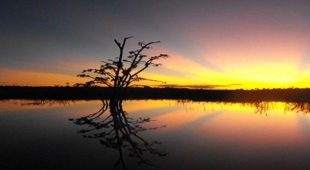 Ecuador impulsa Plan Nacional lucha desertificación, degradación tierras y sequía