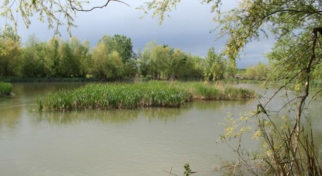 lluvia verano cuenca Segre se ha reducido casi 45% últimos 60 años