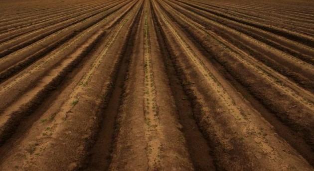 software contribuye reducir 30% consumo agua cultivos