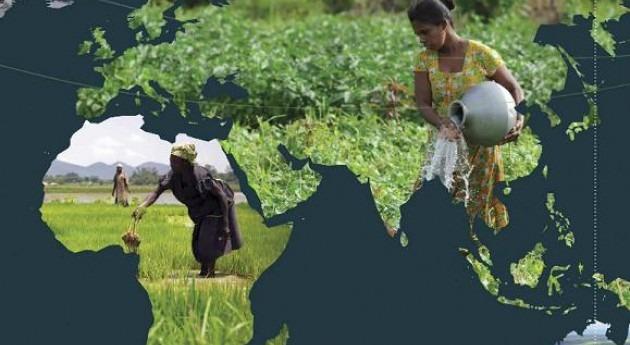 escasez y degradación agua mundo: creciente amenaza seguridad alimentaria