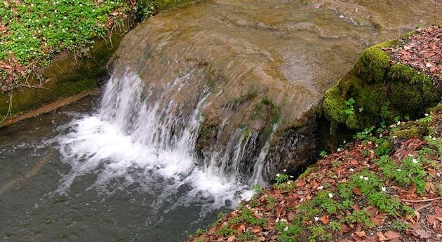 Depuración principiantes VIII-I: Estabilización fangos