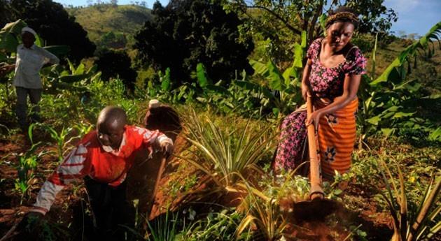 países buscan juntos cómo alcanzar agricultura climáticamente inteligente