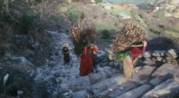 Día Tierra: Proteger ecosistemas mundiales afianza seguridad alimentaria