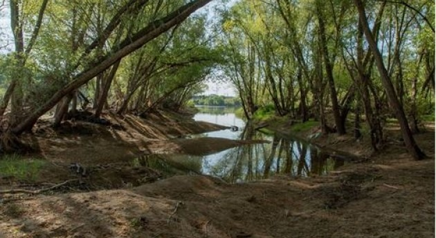Análisis medidas disminución riesgo inundación Eje Ebro