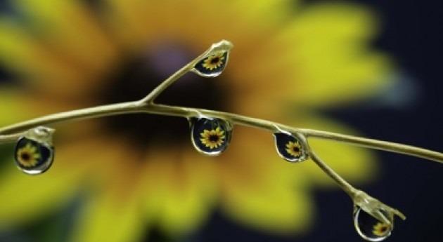 Fundación Aquae y National Geographic lanzan premio fotográfico PhotoAquae