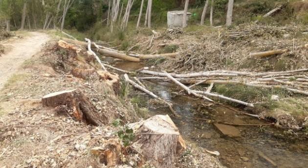 Actuación reducir riesgo inundaciónen río Alhama Cigudosa, Soria