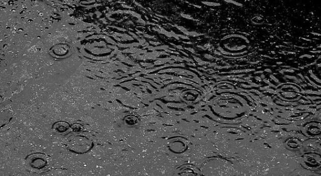 Pérdidas millón toneladas soja intensas lluvias 7 provincias argentinas