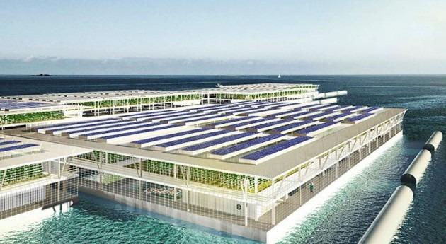 ¿Agricultura mar? Ahora es posible