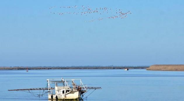Junta tramita proyecto LIFE estudio estuario y márgenes Guadalquivir