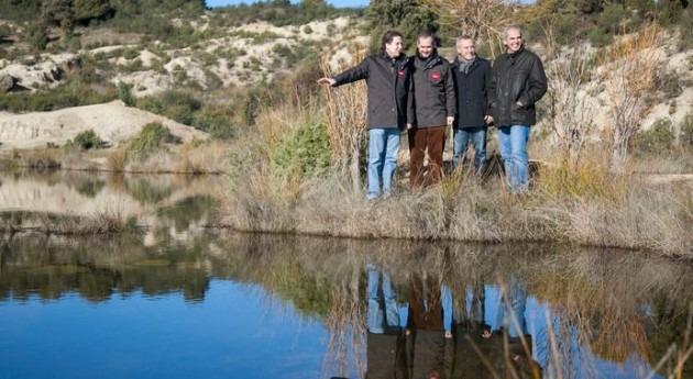 humedales madrileños albergan más 67% aves acuáticas y anfibios España