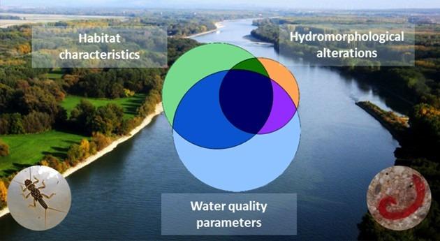 Evaluación factores estrés ambiental invertebrados acuáticos