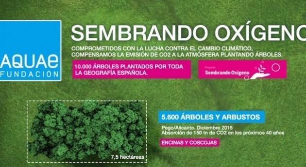 Fundación Aquae lanza campaña participación ciudadana plantar 2.500 árboles